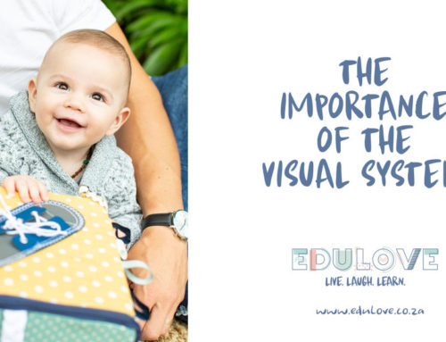 The importance of the visual system